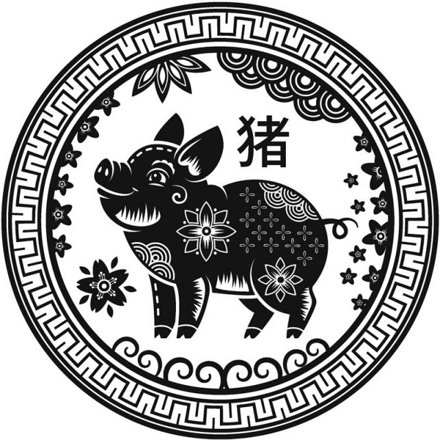 Chinese horoscoop Varken