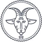 sterrenbeeld januari steenbok